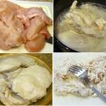 Braised Coconut Shredded Chicken
